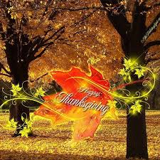 pretty thanksgiving leaf pictures photos and images for