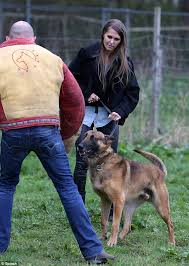 belgian malinois in movies jude cisse gets to grip with navy seals guard dog as pictures