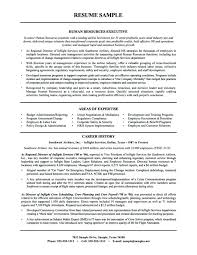 director human resources resume hr resume objective professional hr resume fine human resources