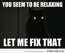 Demon Memes - 3 demon possessed black cat meme pmslweb