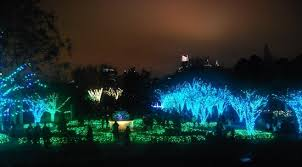 Botanical Garden Atlanta Lights Garden Lights At The Atlanta Botanical Garden Wander For Life