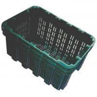 cassette per raccolta olive 36 casse agricole da raccolta olive in offerta su agrieuro