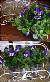 Mason Jar Flower Arrangement Easy Mason Jar Flower Arrangements With Live Plants