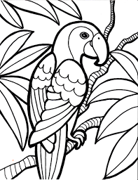 coloring pages birds parrot bird coloring page kids coloring pages