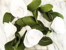 yalnızca te bulabileceğiniz 25 ten fazla en iyi magnolia