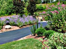 Plants For Front Yard Landscaping - creative front yard landscaping ideas