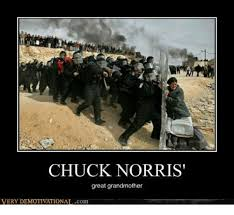 Meme For Grandmother - chuck norris great grandmother very demotivationalcom chuck norris