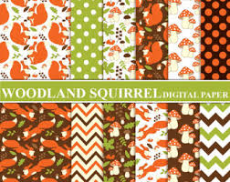 squirrel wrapping paper squirrel paper etsy