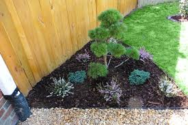 virginia ornamental landscaping topiaries
