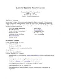 exles of resume professional summary resume exles customer service resume