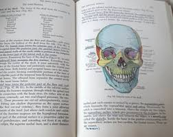 Human Physiology And Anatomy Book Vintage Anatomy Book Etsy