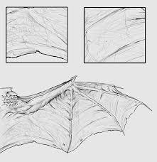 taking flight a beginner u0027s guide into drawing wings