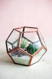 copper glass terrarium display box 4 4