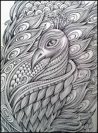 10 best zentangle peacock images on pinterest peacock art