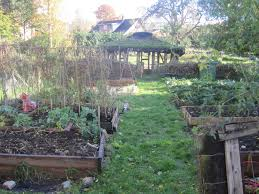 permaculture design training for a sustainable world get growing