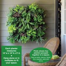 7 best living walls images on pinterest living wall planter
