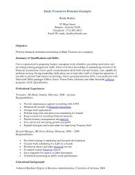 Job Resume Sales by Resume Sample For Teller Position Resume For Your Job Application