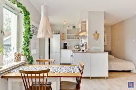 Kitchen Living Room Designs Tiny Studio Apartment With Swedish Charm