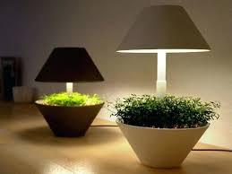 grow light indoor garden indoor light gardening brighten up your indoor garden grow lights