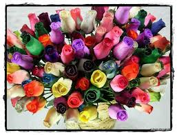 Colorful Roses Flowers Pictures Images Graphics For Facebook Whatsapp Page 185