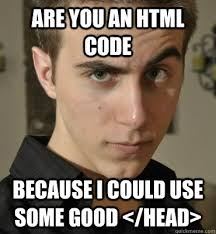 Meme Html - are you an html code because i could use some good head