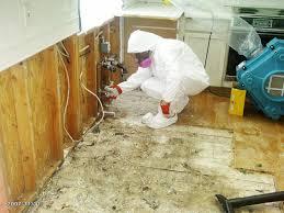 mold remediation vancouver restorations