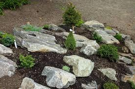 Rock In Garden Rock Gardens Gardening Kenya