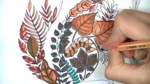 enchanted forest coloring page fox youtube