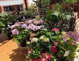 the garden depot landscape professionals