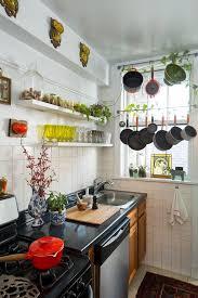 Kitchen Hanging Pot Rack by Window Hanging Pot Rack Kitchen Eclectic With Window Eclectic Pot