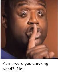 Memes About Smoking Weed - 25 best memes about i dont smoke weed i dont smoke weed memes