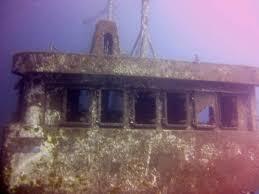 dive and sea tenerife padi divemaster internship diving