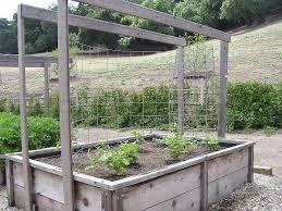 raised vegetable gardens fend off pests