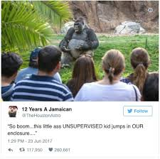 Gorilla Memes - best of philosophy gorilla memes 21 photos thechive