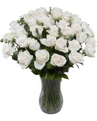 Free Vase 36 Long Stem White Roses With Free Vase