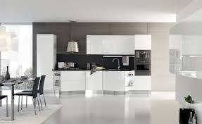 luxury minimalist modern kitchen with glass cabinets home ideas