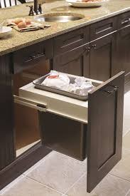 Cabinet Organization  Interiors  Kitchen Craft - Kitchen cabinet interior fittings
