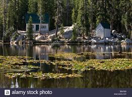 small cabins near mosquito lake alpine county california stock