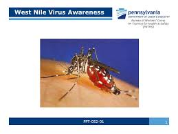 bureau workers comp nile virus awareness ppt bureau of workers comp pa