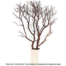 manzanita branches centerpieces manzanita branches 10 up to 96
