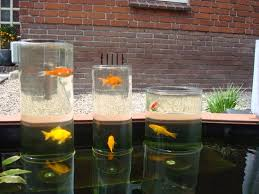 Building A Fish Pond In Your Backyard by A Glas Fish Tower For In Your Pond Great Idea Garden Pinterest