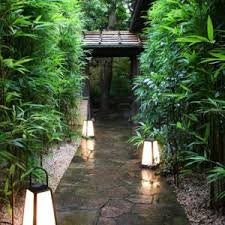 Japanese Garden Lamp by Garden Pathways Tag 15 Beautiful Plants And Ground Cover For