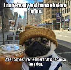 Hipster Dog Meme - i has a hotdog coffee funny dog pictures dog memes puppy