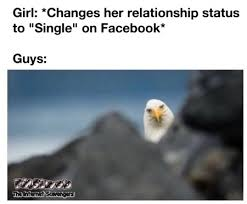 Single Guys Meme - when a girl changes her status to single funny meme pmslweb
