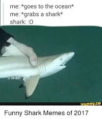 Funny Shark Meme - 25 best memes about funny shark memes funny shark memes
