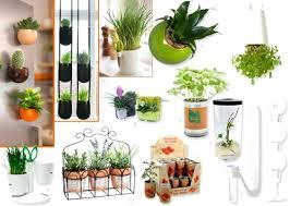plante cuisine decoration deco plantes dacco 10 astuces decoration cuisine plante wealthof me
