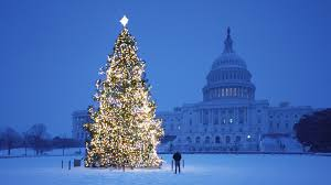 amazing christmas tree photos pc wallpaper desktop images