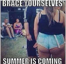 Summer Is Coming Meme - brace yourselfs summer is coming meme