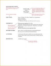 Example Of Simple Resume For Job Application by Examples Of Resumes Free Microsoft Word Doc Professional Job