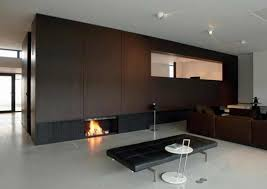 Contemporary Fireplace Doors by Apartment Gas Fireplace For Livingroom Interior Design Modern